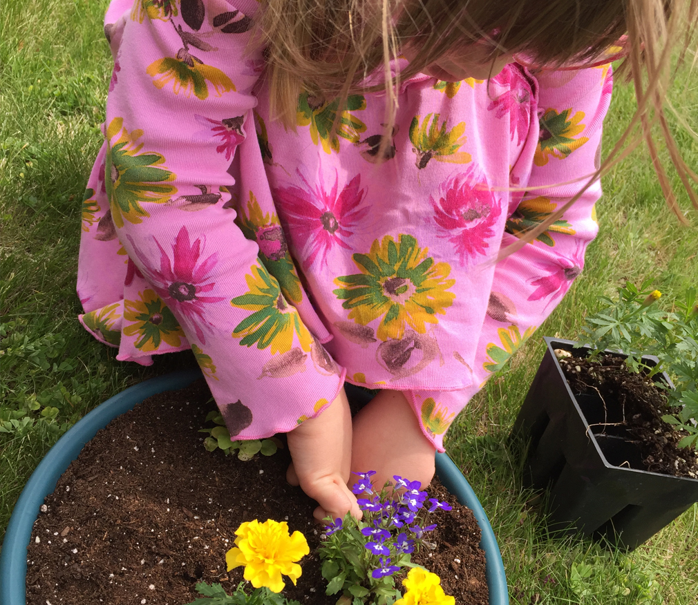 Fairy Gardening with Toddlers