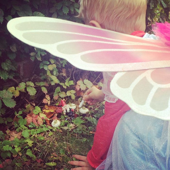 Fairy Scavenger Hunt Series: Autumn