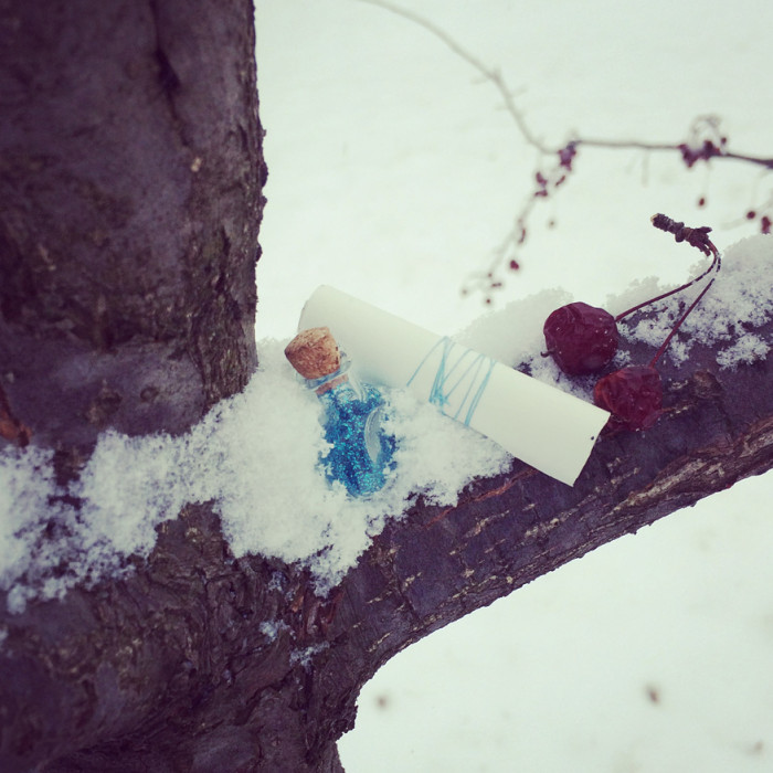 Fairy Scavenger Hunt Series: Winter
