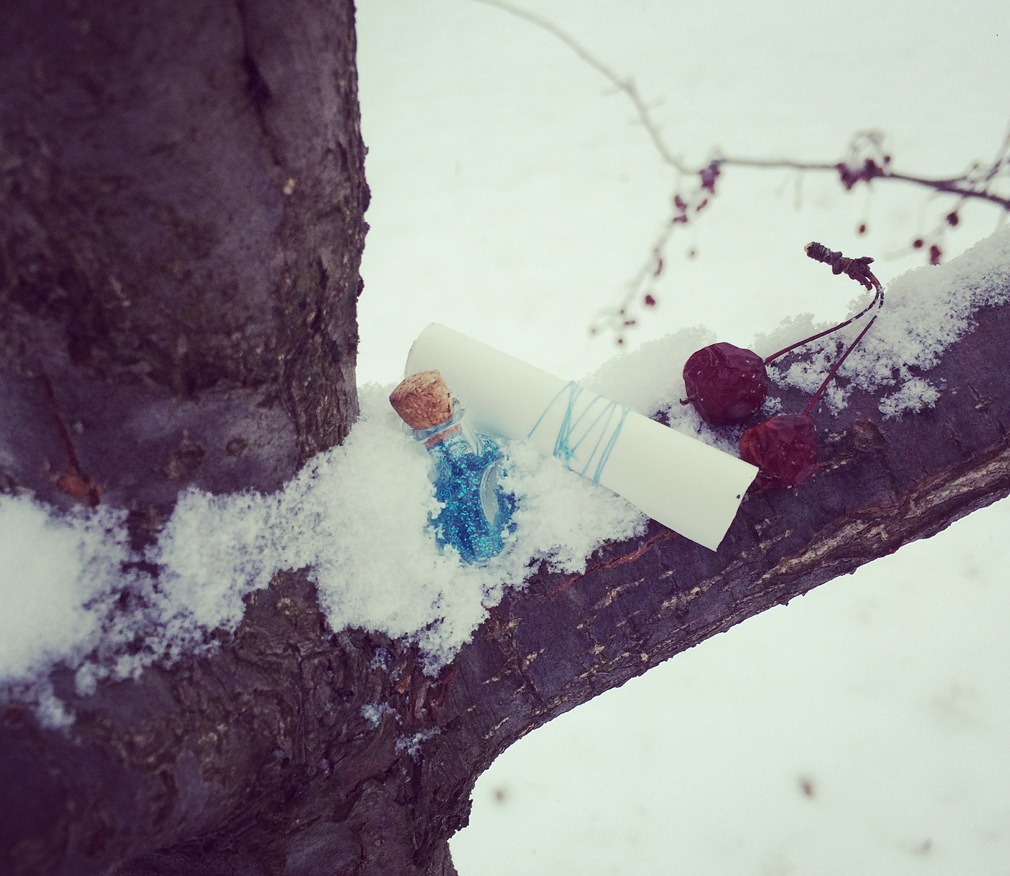 Winter Fairy Scavenger Hunt